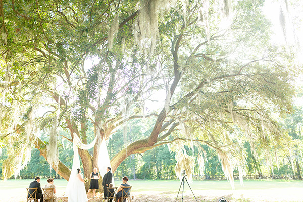 Small micro wedding or elopement under the Promise Tree at Hewitt Oaks